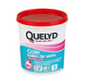 QUELYD COLLE TOILES DE VERRE AVEC INDICATEUR COLORE EN POT DE 1 KG